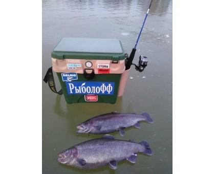 Не АзарТная рыбалка после обеда